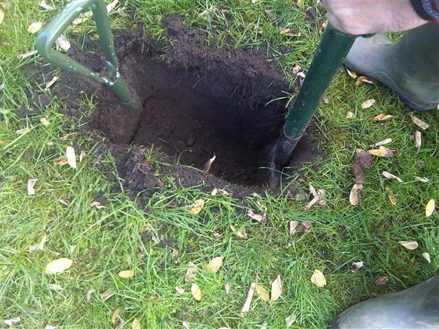 4. Pilot hole dug after using CCTV camera undergound