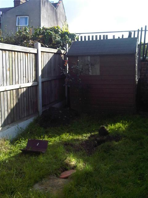 7.     Small back garden with shed