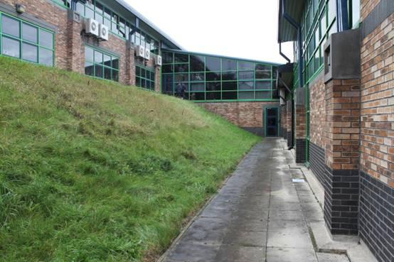 5. Grass bank area between buildings of the school