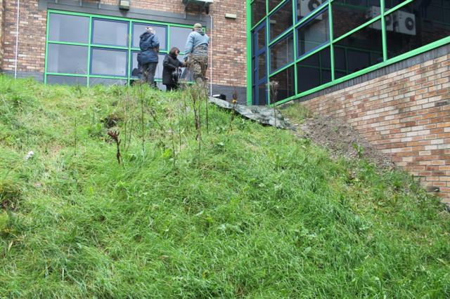 6. Fox 'earth' located in bank next to building showing large amount of dislodged shale sub surface