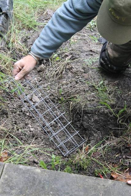 15. Inserting hole plug into fox 'earth'
