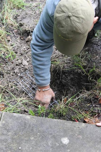 16. Inserting hole plug into fox 'earth'